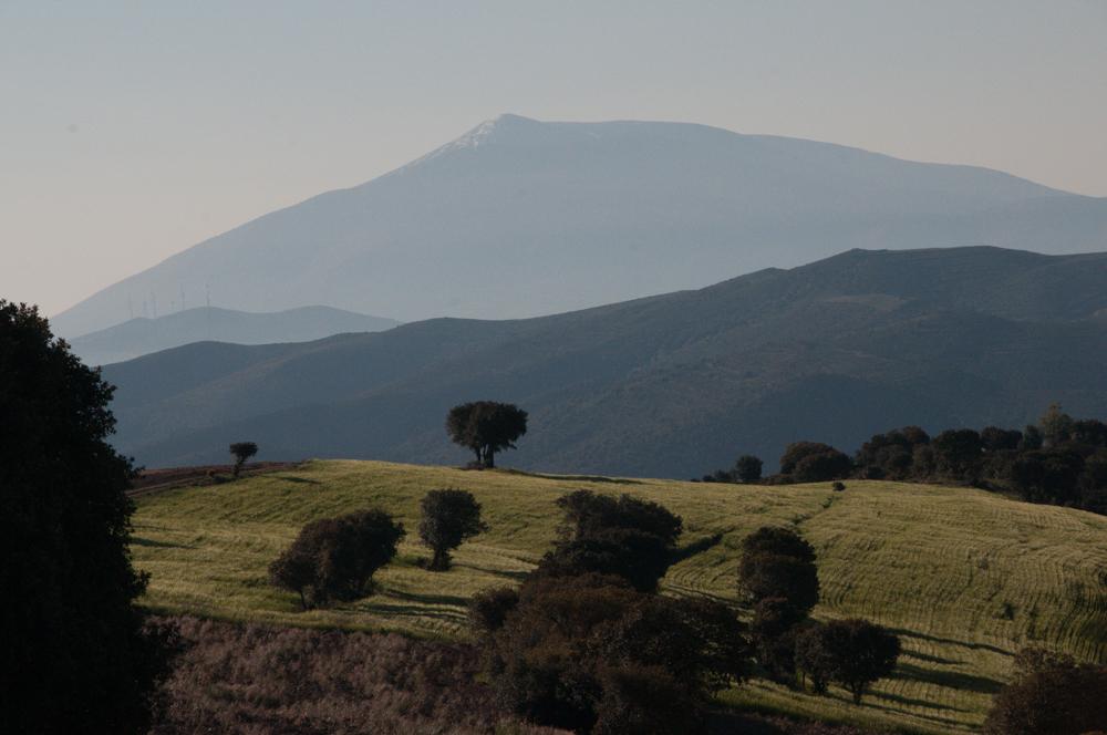 Mountain-Field-Road to Navajun