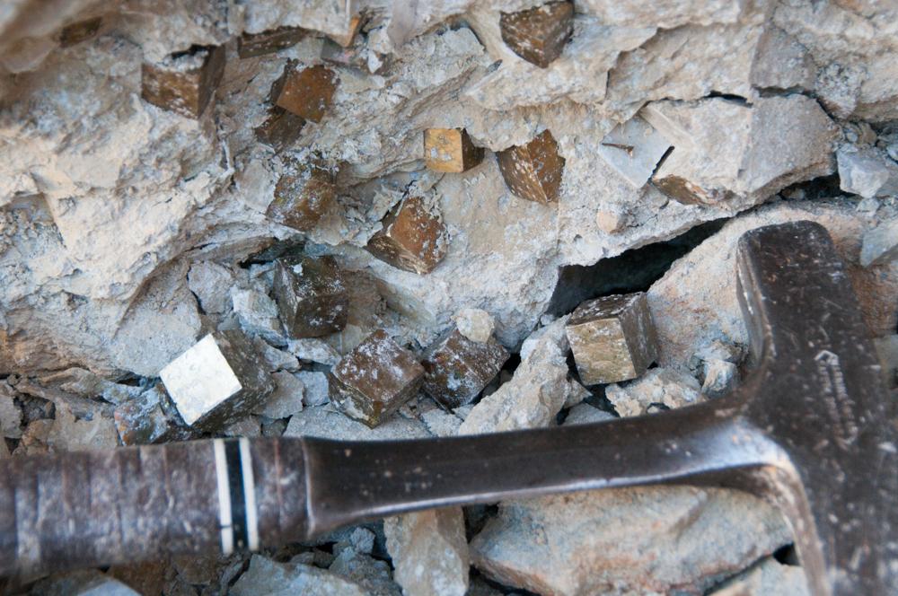 Pyrite in Situ (3)