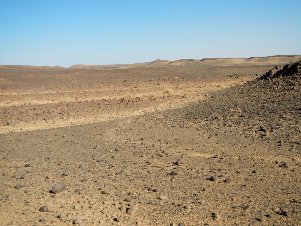 Sahara6