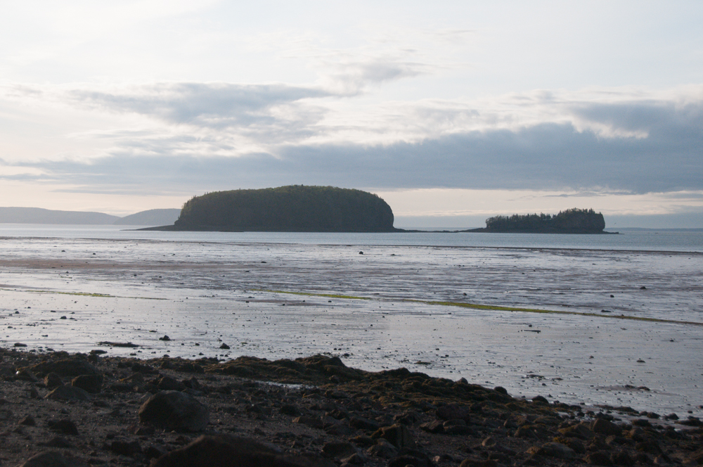 Two Islands from Wassons