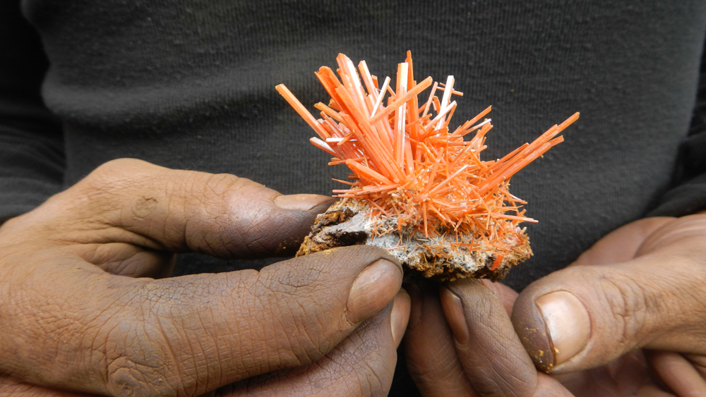 Crocoite from the Adelaide Mine, Tasmania, John Cornish