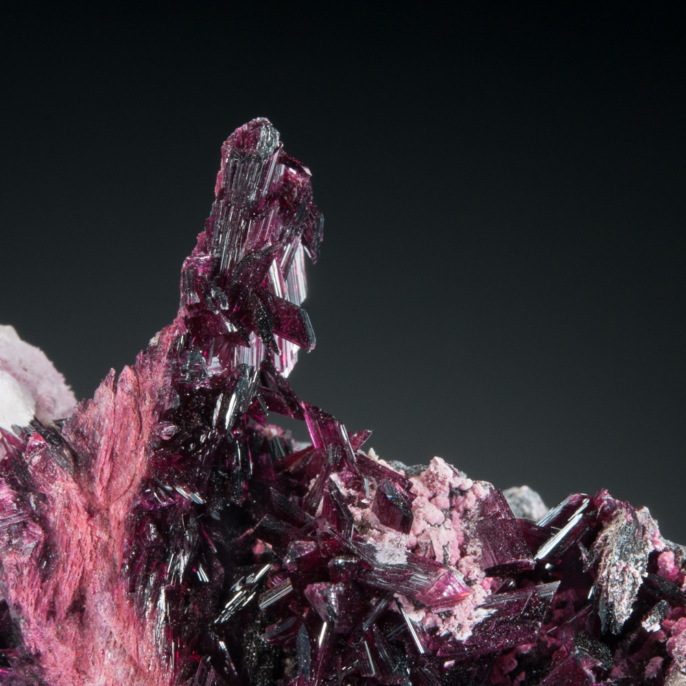 Erythrite, Bou Azzer District, Tazenakht, Ouarzazate, Morocco