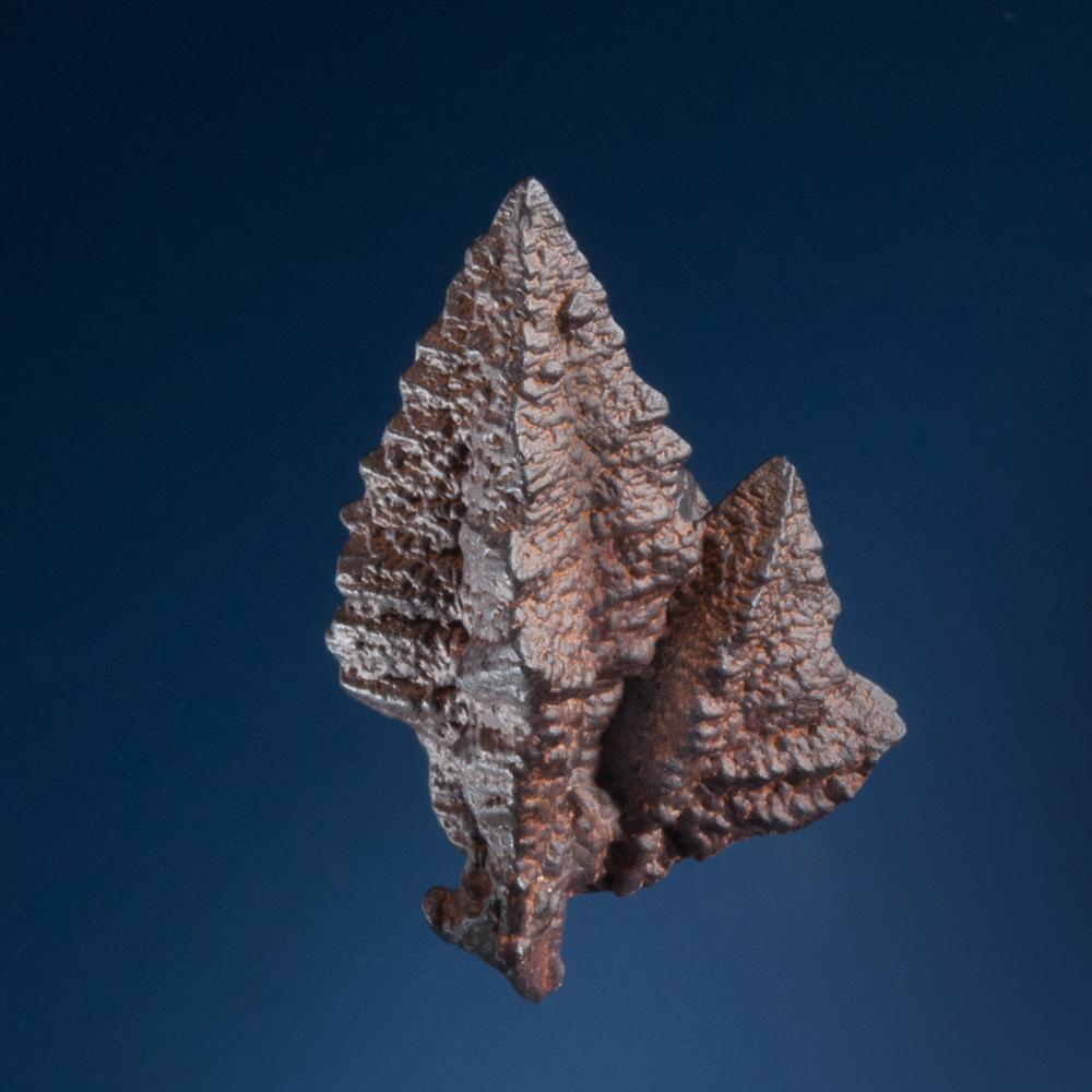 Goethite pseudomorph after marcasite, White Desert, north of Farafra Oasis, Egypt