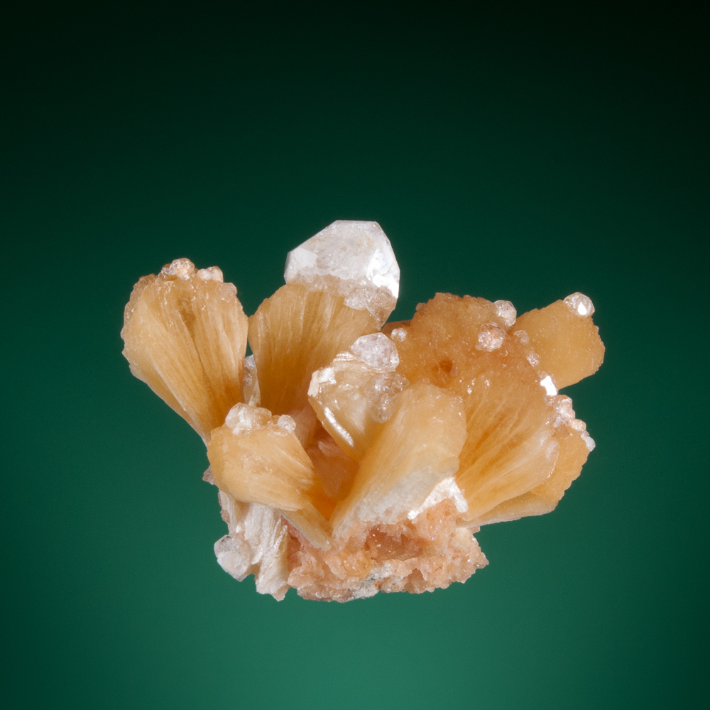 Stilbite and analcime, Five Islands, Nova Scotia, Canada