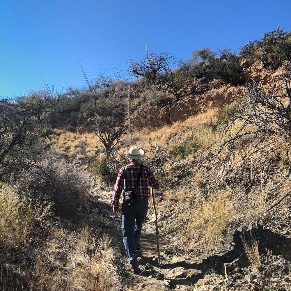 Dave trail